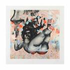 "David Choe ""Falling From Grace"" Signed Giclée Print David Choe Art"