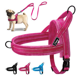 Reflective Dog Harness and Leash Front Leading No Pull Vest Small Large Dog XS L