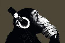 Poster The Chimp stereo Affe Tier Musik Schimpanse Maxiposter 91,5 x 61 cm