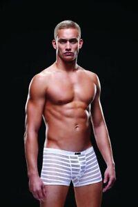 """Baci Envy Men's White Microfibre Trunk Style Boxers, Size L/XL, 36-40"""""""