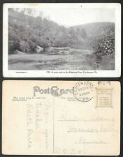 Old Pennsylvania Postcard - Coudersport - Quiet Nook on the Alleghany River