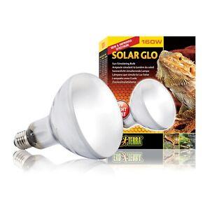 Exo Terra Solar Glo 160 Watt Mercury Vapour UVB Globe Light