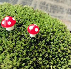 50PCS Mini Red Mushroom Bonsai Craft Garden Decoration Ornament Plant Pot Fairy