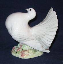 Beswick Fantail Pigeon # 1614