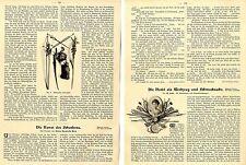 Die Nadel als Werkzeug und Schmucksache. Kulturgeschicht.Essay von 1903