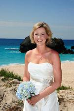 David's Bridal Destination Wedding Dress