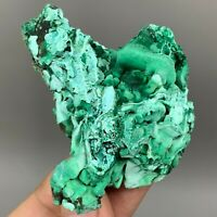 Natural Malachite mineral crystal from Anhui, China Y633
