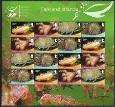 FALKLAND 2013 Meerestiere Seestern Shallow Marine Surveys ZD-Kleinbogen ** MNH
