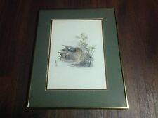 Mads Stage Watercolor Print Framed Matted Green Winged Teal Anas Crecca