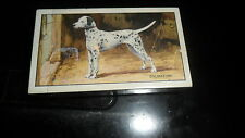 GALLAHER DOGS SERIES  OF 48  CARDS - COMPLETE
