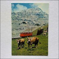 Pilatus Eselwand Postcard (P437)