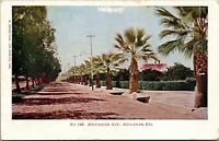Vintage 1904 Brookside Avenue Street View, Redlands California CA Postcard