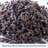 Super Blue 20 gram Dried Natural  Lavender Flower - Free Shipping - Vacuum Pack