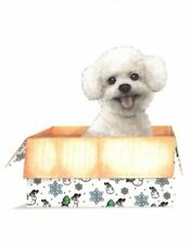 White Bichon Frise In a Box Blank Note Cards Notecards Crane Crane's - Set of 7