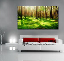40x70x3cm Green Forest Stretched Canvas Print Wall Art Framed Home Decor Tree