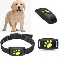 IMPERMEABILE Pet Collare GPS GSM GPRS Tracker Localizzatore Tempo Reale per Cani