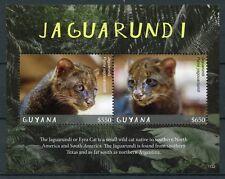 Guyana 2017 MNH Jaguarundi 2v S/S Big Cats Wild Animals Stamps