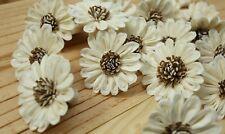 50 Sunflower 5Cm cm dia Flower Diffuser Handmade Sola Wood Wholesale Spa Wedding