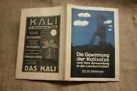 Fachbuch Gewinnung Kalisalz Kalibergbau Herstellung Kalidünger Bergbau 1929