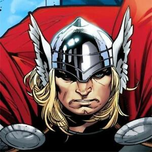 Thor the Mighty Avenger Beverage Dessert Napkins 16 Ct Birthday Party Supplies