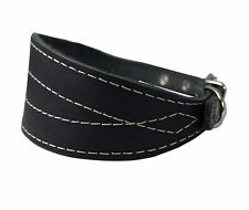 "Real Leather Dog Collar 12""-16"" neck 2.75"" wide Greyhound Whippet Dachshund"