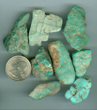 79 Gram Stabilized American Turquoise Rough Fox mines