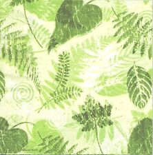 2 Serviettes en papier Feuilles Fougère Paper Napkins Modern Leaves