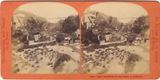 Suisse Fribour Photo Lamy Stereo Vintage albumine ca 1870