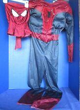 Marvel Comics SPIDER-MAN 2 Halloween Costume~MUSCLE CHEST~Boys Size Medium (7-8)