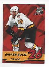 2010-11 Chicago Wolves (AHL) Andrew Kozek (Nürnberg Ice Tigers)
