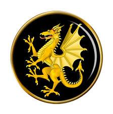 Somerset Dragon Pin Badge