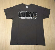 Milb Altoona Curve Minor League Baseball Grey Graphic Shirt L