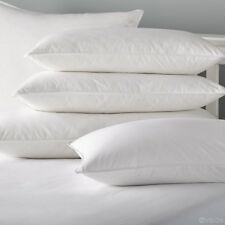 Goose Feather & Down Pillows (Pack of 4) 100% Goose -UK Stock -White Hotel Style