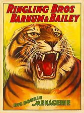 1916 Barnum & Bailey Tiger Vintage Circus Advertisement Art Poster