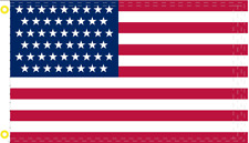 51 STARS USA PROPOSED AMERICAN 3x5 FLAG 100D USA BANNER Puerto Rico PR1