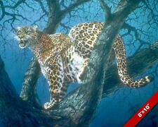 LEOPARD IN TREE AT NIGHT WILD ANIMAL PAINTING WILDERNESS ART REAL CANVAS PRINT