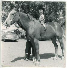 1954 Photo Cute Baby Boy Alan Harrison Sitting on Big Horse