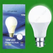 220V 10W Light Bulbs