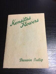 Kensitas Silk Flowers Medium Sized Cig Card ( DARWIN TULIP ) No 13