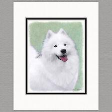 Samoyed Dog Original Art Print 8x10 Matted to 11x14