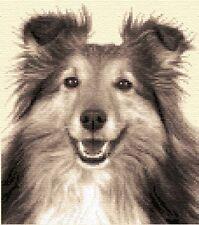 SHELTIE, SHETLAND SHEEPDOG - dog Complete counted cross stitch kit