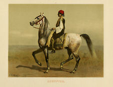 Antique Print-AEGYPTER-EGYPTIAN HORSE-PL. 1-Volkers-1880