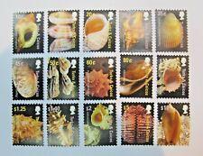 Turks & Caicos Island 2007  Shells Stamp MNH