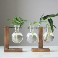 Fleur Propagation Station New Glass Vase Decor Display Home Plant Decorative