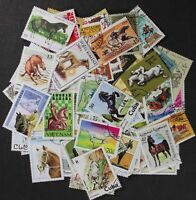 HORSES stamp collection, wonderful lot made up of 100 different stamps (lot#RG)