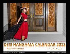 Desi Hangama Calendar 2013 - 5 PACK