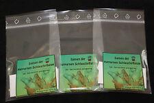 Fleischfressende Pflanzen 3 x 30 Sarracenia purpurea Samen - Schlauchpflanze