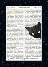 Nosy Black Cat Head Print Vintage Dictionary Page Wall Art Pictures Upcycled
