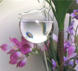 3 Stück Große Durstkugel Gießkugel Bewässerungskugeln Glaskugel Top Qualität