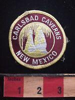 New Mexico CARLSBAD CAVERNS National Park Patch Emblem 73B4